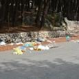 """""""E la munnezza è ancora qua…"""". Fino a mercoledì sera la situazione a San Pietro a Cesarano, teatro di sversamento illegale di rifiuti probabilmente nei giorni di Ferragosto era la..."""