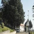 Presso il Centro Ricerche Oncologiche di Mercogliano è stato presentato l'indice di mortalità per il cancro nella provincia di Avellino. Dall'indagine effettuatarisulta che Avella, Atripalda e Solofra sono le aree...