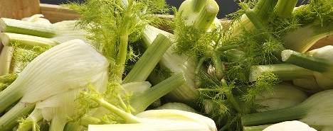 verdura_bianca_g